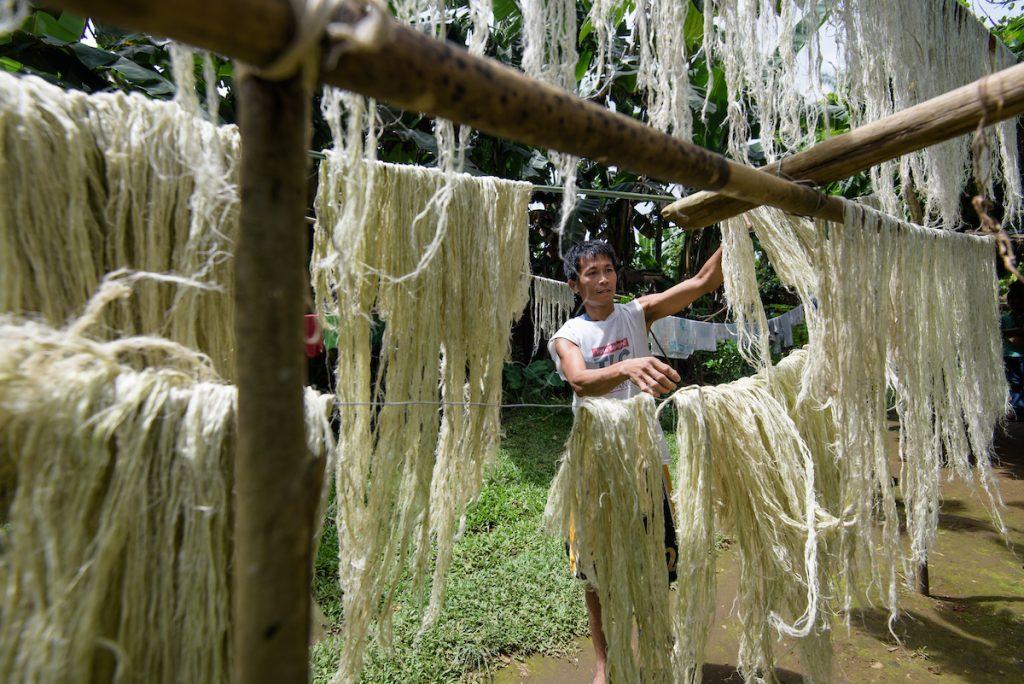 Las hojas de piña se transforma en textil