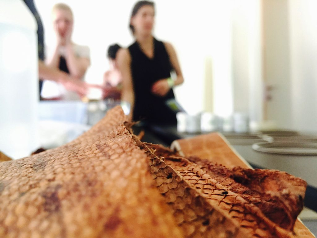 Cuero de pescado, desarrollado en Patagonia