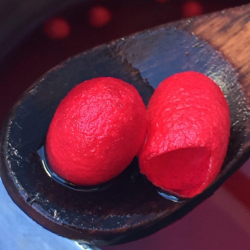 El colorado se obtiene de la cochinilla