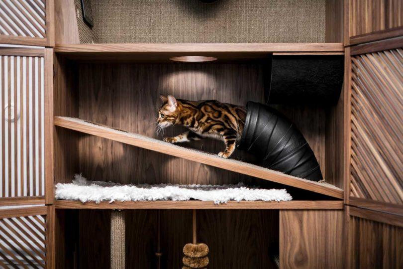 Un mueble para tu gato