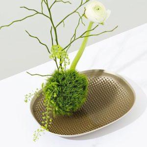 Jamie Wolfond. Diseño canadiense