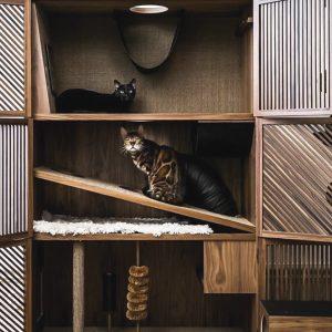 Muebles para mascotas
