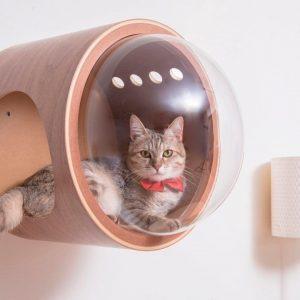 Camas con diseño para mascotas