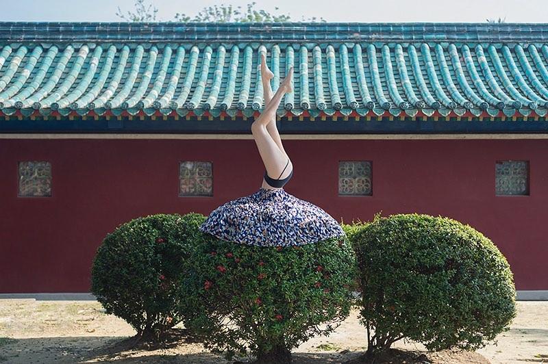 Yung Cheng Lin . Fotografia