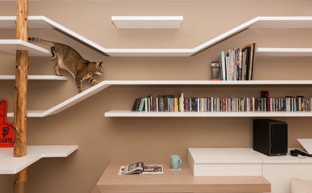 Arquitectura y mascotas