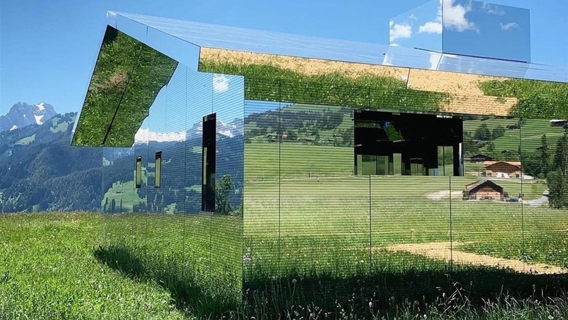 Artistas y creativos inspirados en la naturaleza